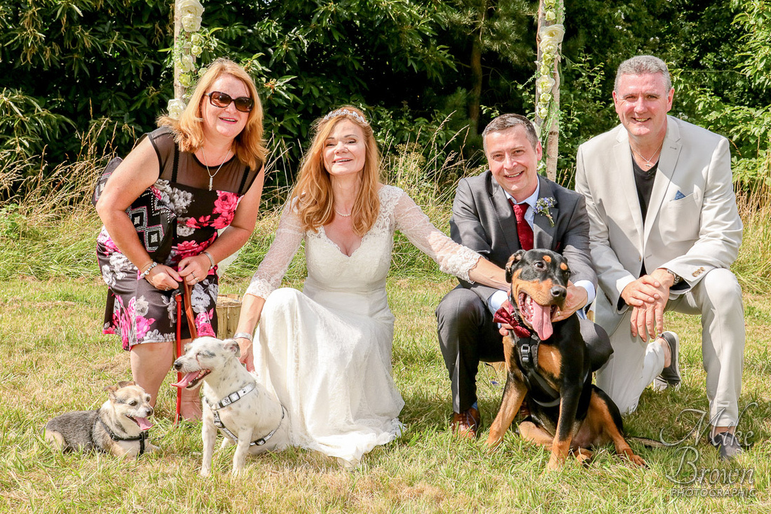 3 Dogs and a Wedding